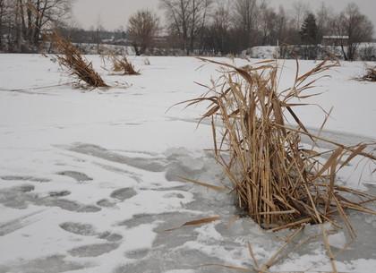 Як зберегти рибні запаси та уникнути задухи риб в зимовий період?